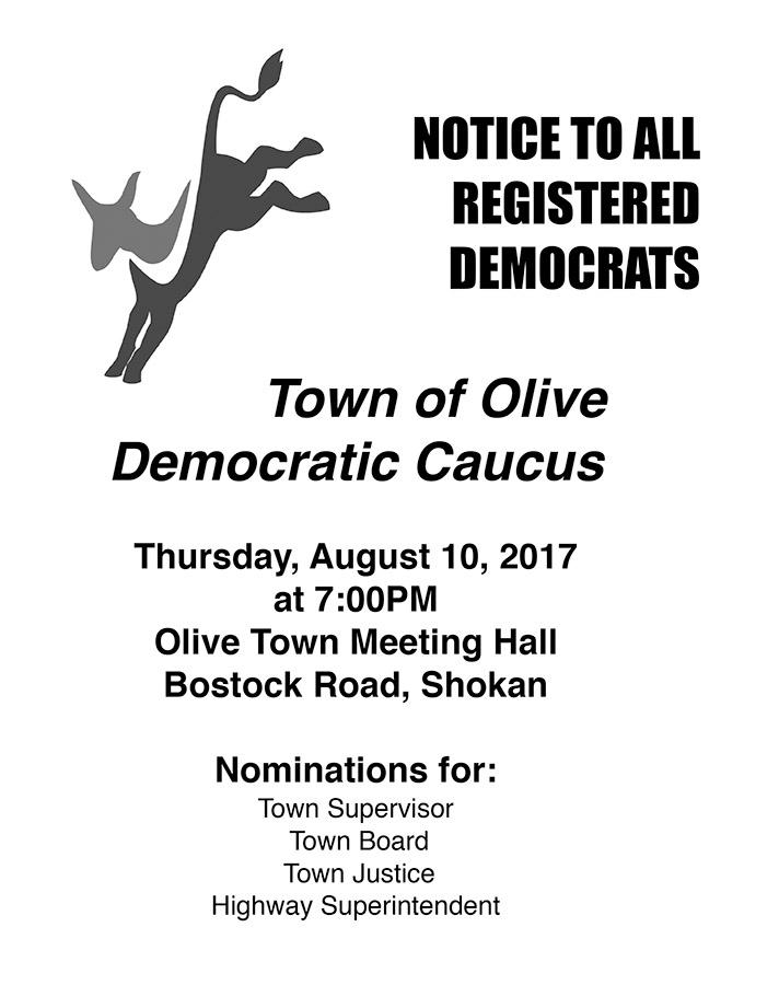 Olive NY Democrats